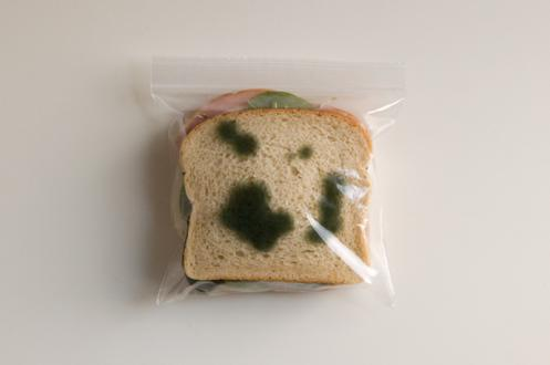 Anti-theft-sandwich-bags-2