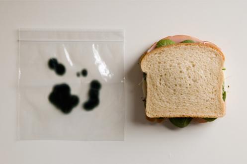 Aanti-theft-sandwich-bags